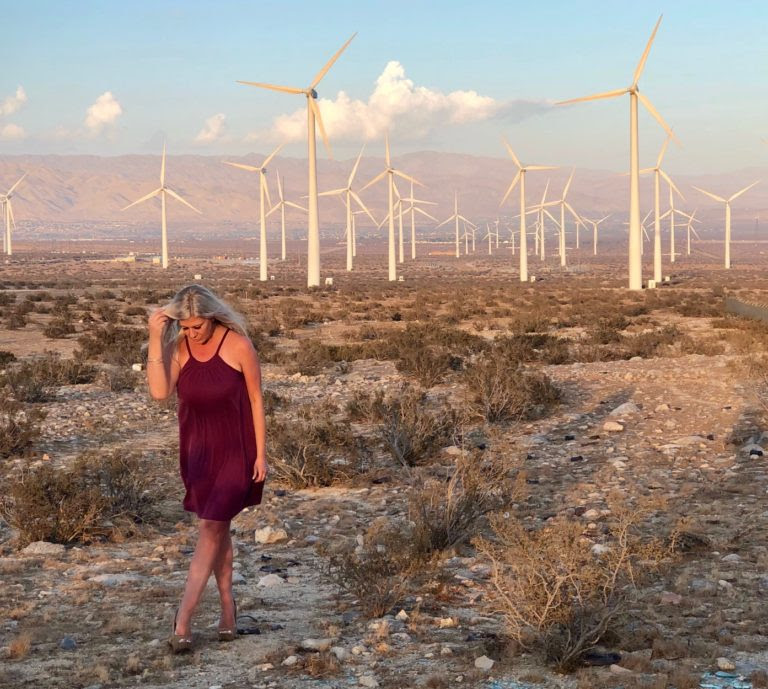 Shannon Lazovski Palm Springs Windmills